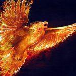 Firebird Phtot.1